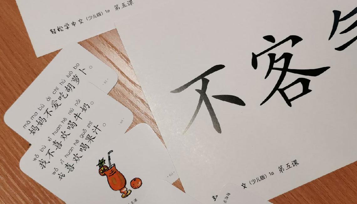 чита дипломат китайский язык